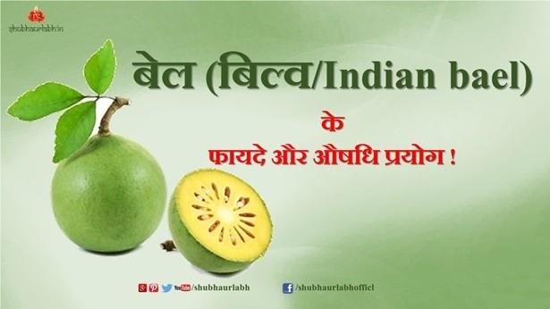 Indian bael