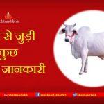 cow benefits